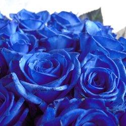 画像2: 【日本での加工だからできる激安価格!!】人気の青バラ【ブルーローズ】30本花束10500円(1本あたり350円)
